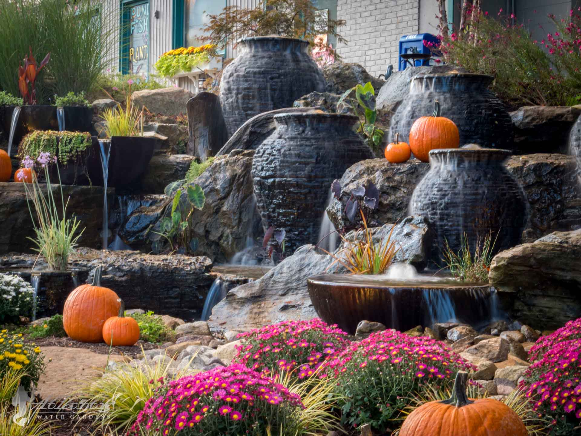 Reasons to Install a Fountain For Your Pond