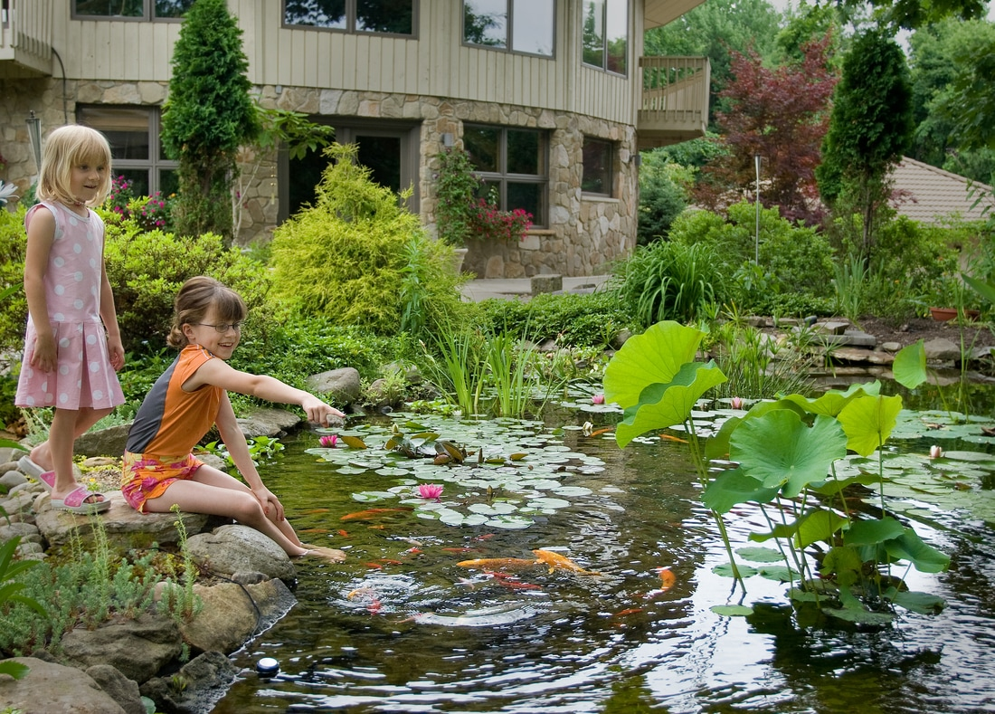 Are koi ponds a liability or safety issue
